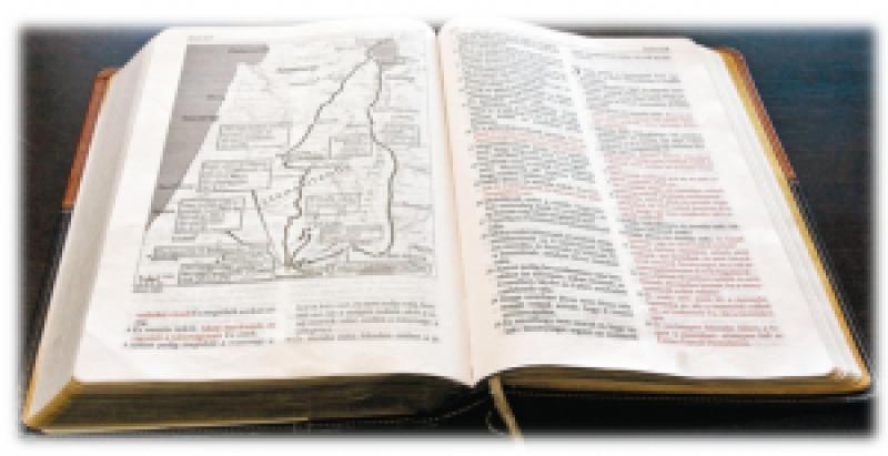 On-line Biblia