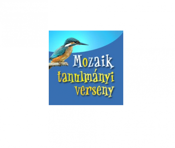 Újra a Mozaik anyanyelvi verseny országos döntőjében a Huszár Gál-os diákok!